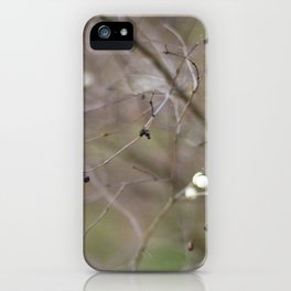 The Storm Within the Calm iPhone Case