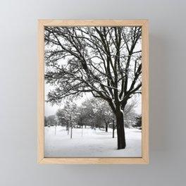 Arbres à feuilles enneigés Framed Mini Art Print