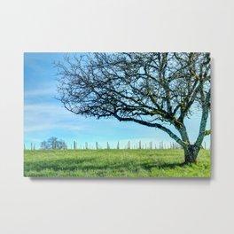 Rex Hill Tree Metal Print