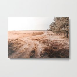 Autumn Heather Photo | The Netherlands Photography | Dutch Nature On Veluwe Metal Print