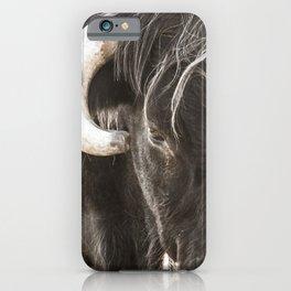 Highlander cow iPhone Case