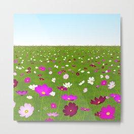Wild colorful flowers field Metal Print