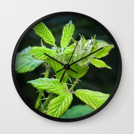 Blackberry Leaves Wall Clock