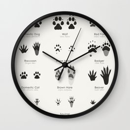 Infographic Guide for Animal Tracks (Hidden Tracks) Wall Clock