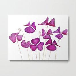 purple clover leaves Metal Print