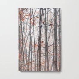 Entwined Metal Print