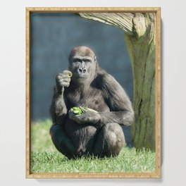 Gorilla Lope Snack Time Serving Tray