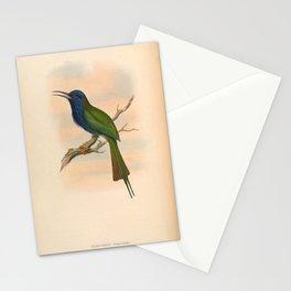 Kingfisher Vintage Bird Meropogon Forsteni Stationery Cards