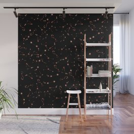 A Sky Full Of Star Constellations  Wall Mural