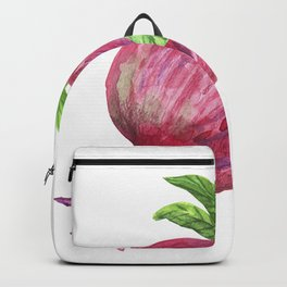 Pomegranate fruit with flower and leaves. Backpack