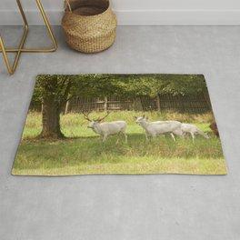 Leucistic deer herd Rug