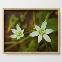 Wild Beauty Botanical / Nature / Floral Photograph Serving Tray