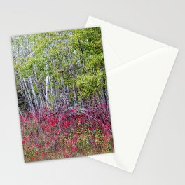 red and green  Stationery Cards