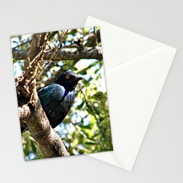 African Blue Bird Perched Tree Branches 2 Stationery Cards