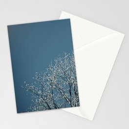 Spring Blue Stationery Cards