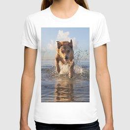 Izzy's Aloha Friday. T-shirt