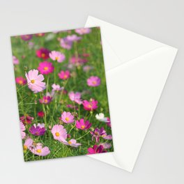 Pink Cosmos Field in Sunshine Photography Stationery Cards