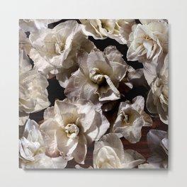 White Narcissus photograph Metal Print