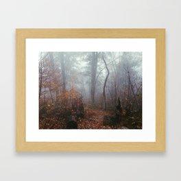 Appalachian Trail in Fog Framed Art Print