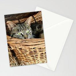 Basket Kitty (Lanai Cat Sanctuary) Stationery Cards