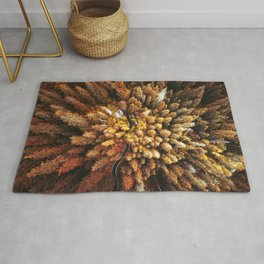 autumnal forest with winding road Rug