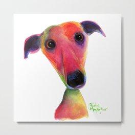 Nosey Dog Whippet Greyhound ' BERTA ' by Shirley MacArthur Metal Print