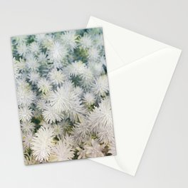 Exceptional succulents Stationery Cards