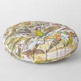Birds Adolphe Millot Butterfly Vintage Scientific Illustration Old Le Larousse pour tous Encyclopedia Floor Pillow