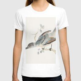 Hummingbird (1688-1698) by Johan Teyler (1648-1709) T-shirt