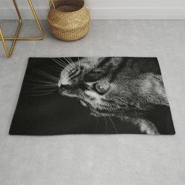 kitten in black and white Rug