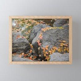 Fall Creek Framed Mini Art Print
