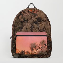 Winter Sunset And Clematis Vines Backpack