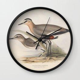 KEPTUSCHKA LAPWING Wall Clock