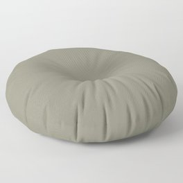 Pigeon Gray Green Solid Color Pairs Farrow and Ball 2021 Color of the Year Treron 292 Floor Pillow