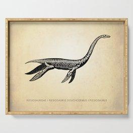 Plesiosaurus, Dinosaur Art Print, Plesiosaurus Print, Dinosaur Art, Kids Decor, Illustration, Natural History, Dinosaur Skeleton, Dinosaur Bones, Dinosaur Poster, Classroom, Science Art Serving Tray
