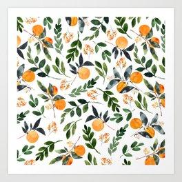 Orange Grove Kunstdrucke
