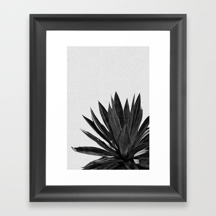 Agave Cactus Black & White Gerahmter Kunstdruck
