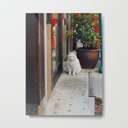Cat by Vicky Ng Metal Print