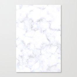 Classic Grey and White Natural Stone Veining Quartz Canvas Print