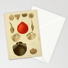 Vintage Print - Universal Dictionary of Natural History (1849) - Molluscs 7 Stationery Cards