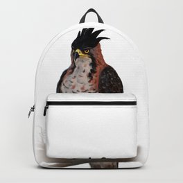 The ornate hawk-eagle is a bird of prey. Backpack
