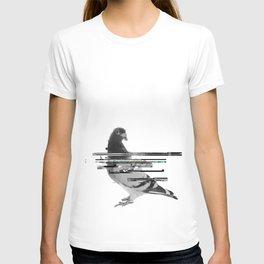 Catalogued T-shirt
