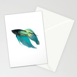 Male Betta Stationery Cards