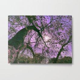 Lavender Skies Metal Print