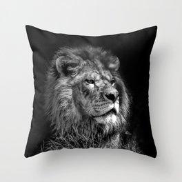 Proud Young Lion Throw Pillow
