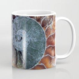 Spiral Ammonite Fossil Coffee Mug