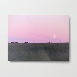 Icelandic horses at sunset with upcoming moon | Travel Photography Metal Print
