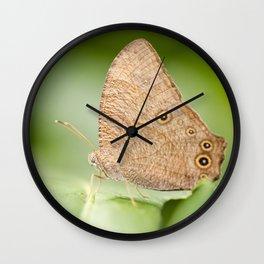 Evening Brown Butterfly Wall Clock