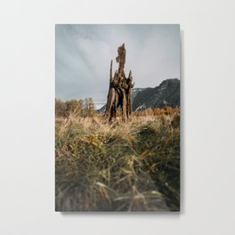 Mystical Old Growth Metal Print