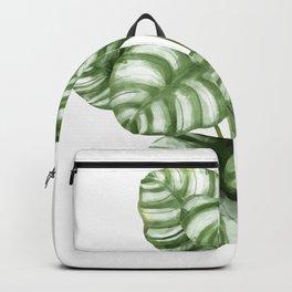 Calathea Green Leaf Plant Backpack